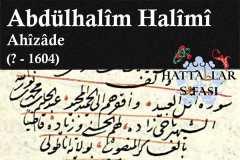 Hattat Ahizade Abdülhalim Halimi Efendi, Hayatı ve Eserleri