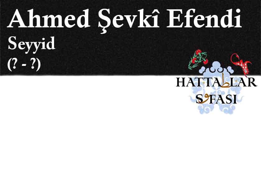 Hattat Seyyid Ahmed Şevki Efendi, Hayatı ve Eserleri