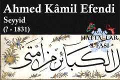 Hattat Seyyid Ahmed Kamili Efendi, Hayatı ve Eserleri