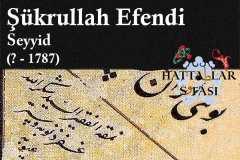 şükrullah-efendi-seyyid_1