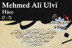 mehmed-ali-ulvi-efendi-hace