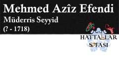 Hattat Seyyid Mehmed Aziz Efendi, Hayatı ve Eserleri