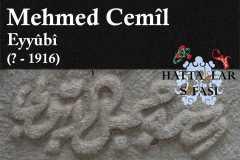 mehmed-cemil-efendi-eyyubi