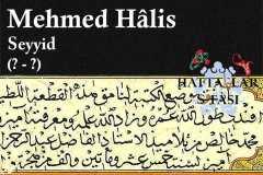 mehmed-halis-efendi-seyyid