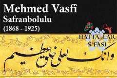 mehmed-vasfi-efendi-safranbolulu